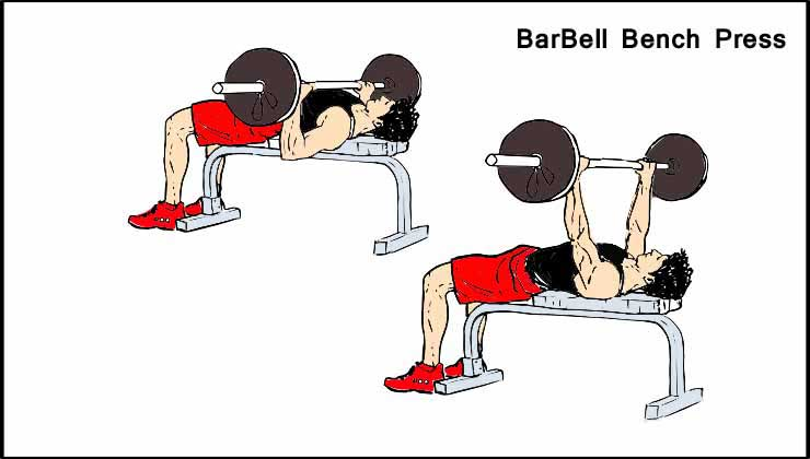 Chest Workout For Men in Hindi BarBell Bench Press