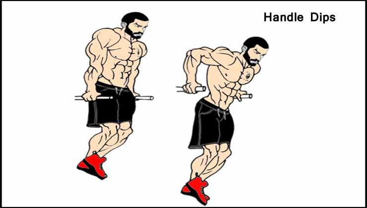 Handle Dips