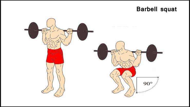Leg Workout in Hindi Barbell Squat