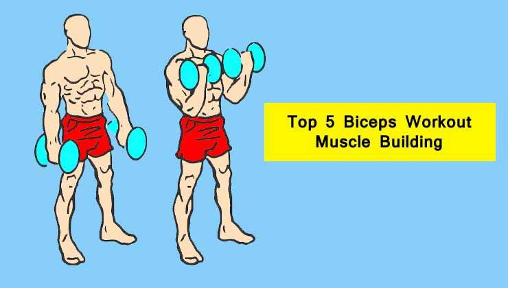 Biceps Workout in Hindi