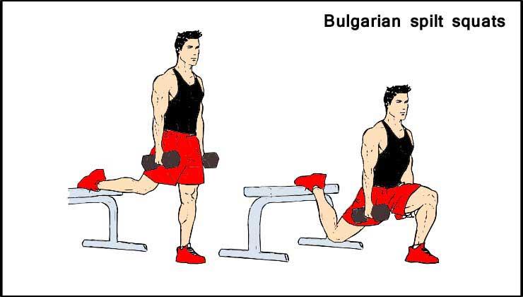 Bulgarian spilt squats