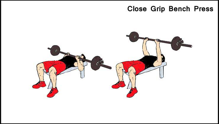 Triceps Workout in Hindi Close Grip Bench Press