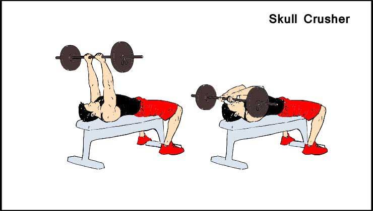 Triceps Workout in Hindi Skull Crusher