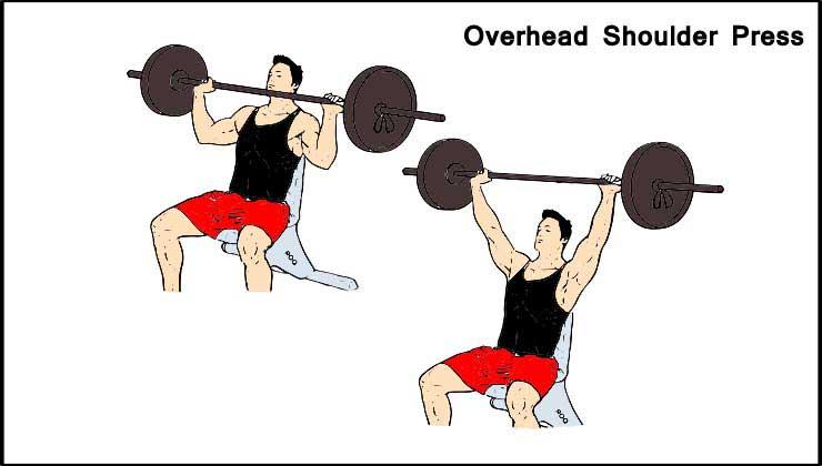 Overhead Shoulder Press for Shoulder Workout in Hindi