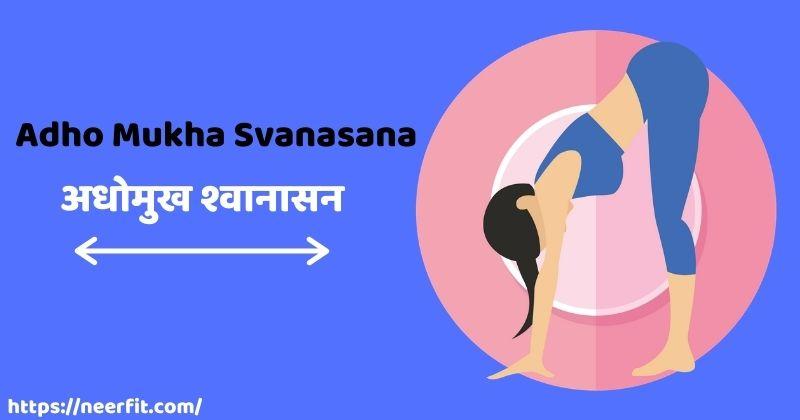 Adho Mukha Svanasana in Hindi