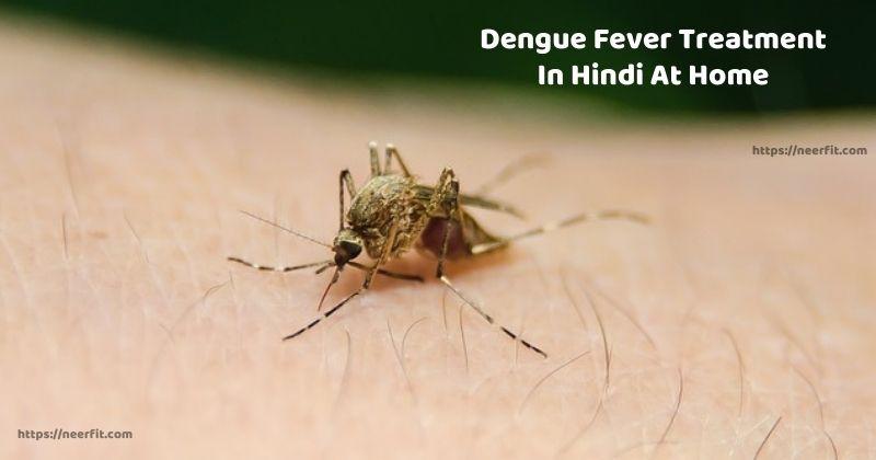Dengue Fever Treatment In Hindi At Home